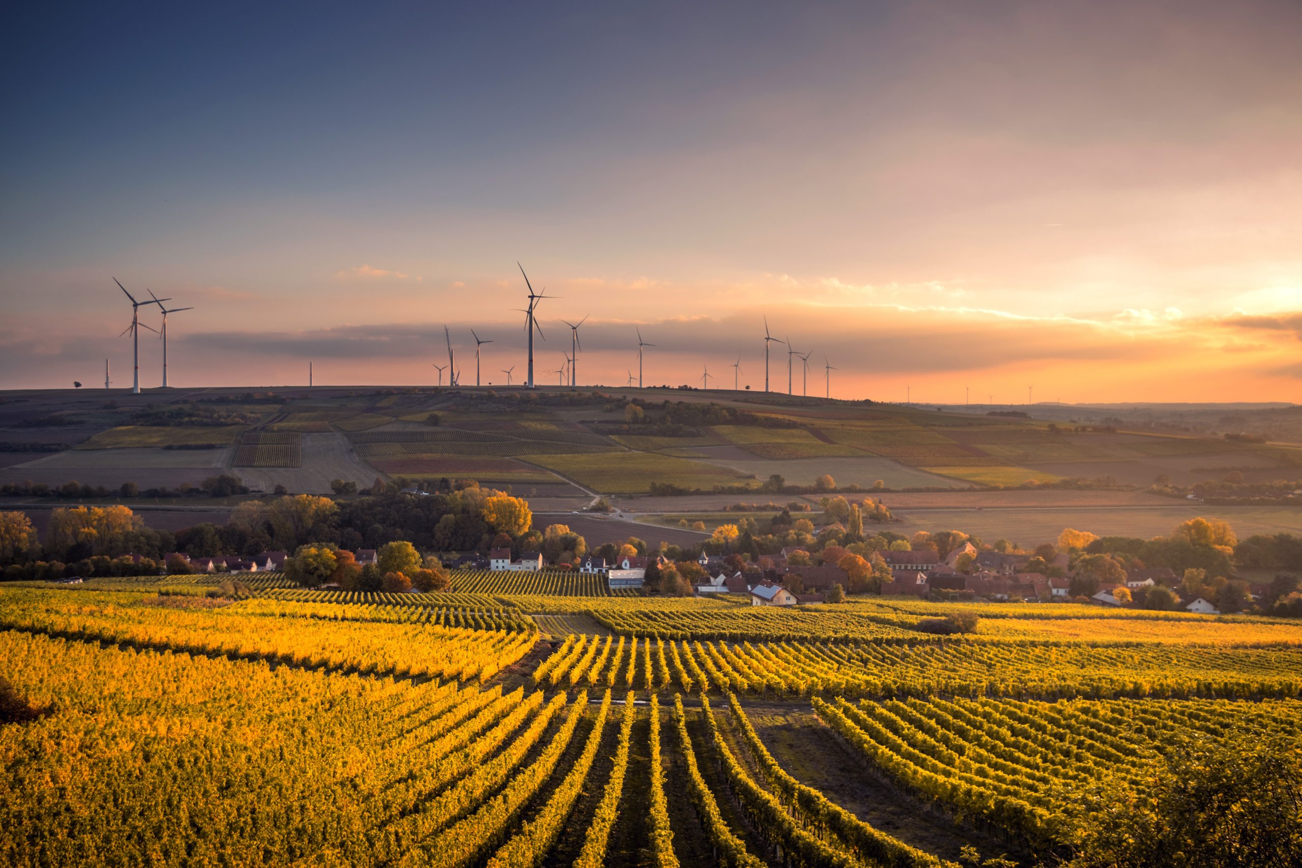 What drives ESG in Insurance